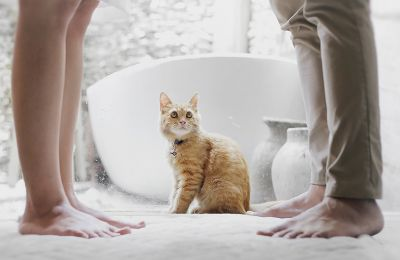 Ποια ζώδια επιμένουν σε μια «τελειωμένη» σχέση και γιατί