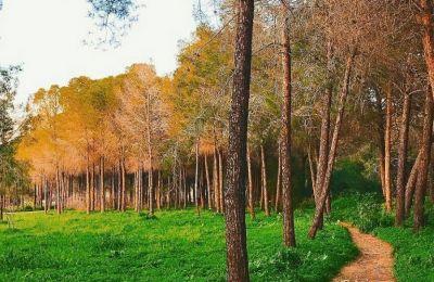 5 περίπατοι στην Λευκωσία για να βυθιστείτε στην ομορφιά της φύσης