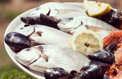 14 χώροι στην Κύπρο για το ψάρι των Βαΐων