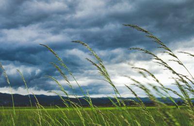 Άνεμοι, βροχές και πιθανότητα καταιγίδας στο καιρικό μενού
