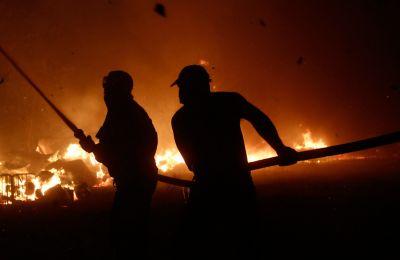Φωτιά στη Βαρυμπόμπη: Οι celebrities στέλνουν τα δικά τους μηνύματα
